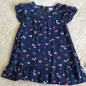 Beautiful Carter's dress with bloomers
